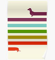 (Very) Long Dachshund Poster