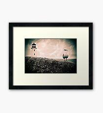 Peggy's Cove Seagull & Lighthouse Framed Print