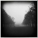 Fog. II by tbartoshyk