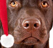 Christmas Labrador dog Sticker