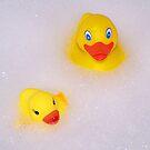 Never Swim Alone by Crystal Zacharias