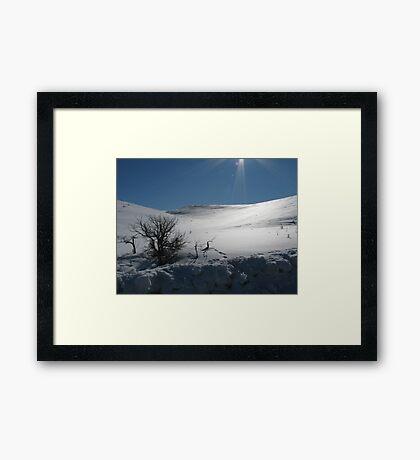 Sparkling Sunshine Framed Print
