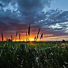 Corner Sunset by Darren  Rooney