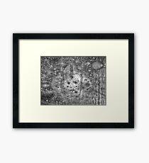 Padme Amidala - Queen of Naboo Framed Print