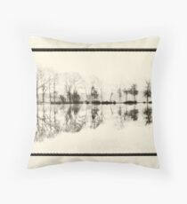Misty morning in the park Throw Pillow