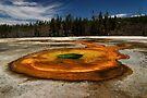 Chromatic Pool - Upper Geyser Basin - Yellowstone National Park by Stephen Beattie