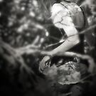 Her Woodland Dream by Nikki Smith