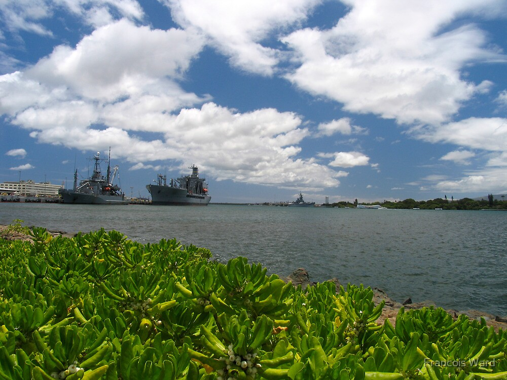Pearl Harbour, Oahu, Hawaii 2011 by Francois Ward