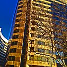 Late Winter afternoon in Crystal City  by michael6076