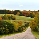 Rolling Hills and Cow Fields of Prince Edward Island by Nadine Staaf
