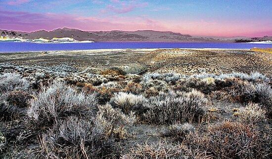 Pyramid Lake at Sundown #5 by SB  Sullivan