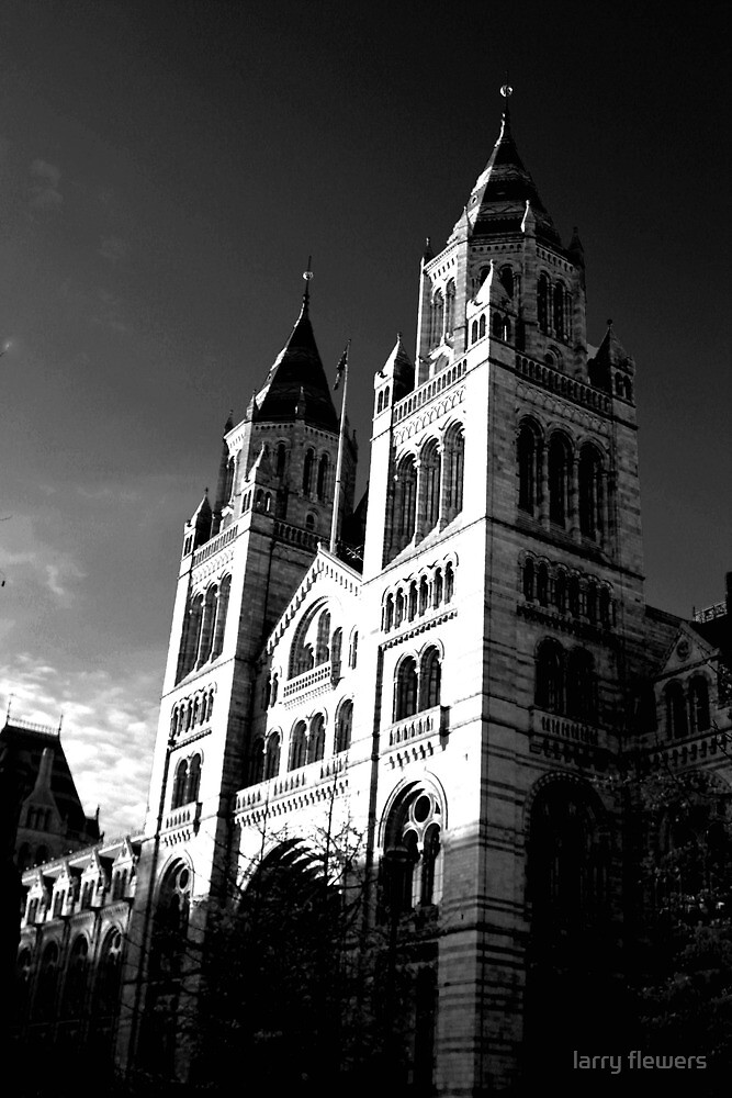 National History Museum  by larry flewers
