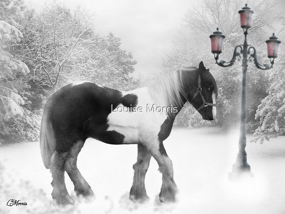 Winter magic by Louise Morris