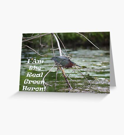 I am the real Green Heron! Greeting Card