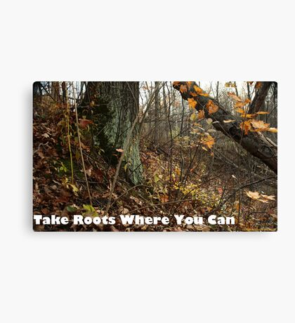Take Roots Where You Can Canvas Print