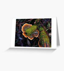 Plate Fungus Greeting Card