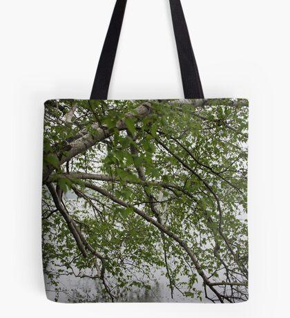 Birch Tree Waterscape 3129 Tote Bag