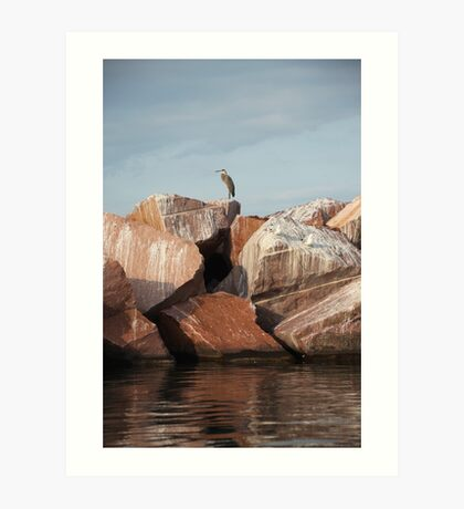 Blue Heron on Red Rock Art Print