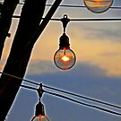 Bare Bulbs Burning Bright by designerbecky
