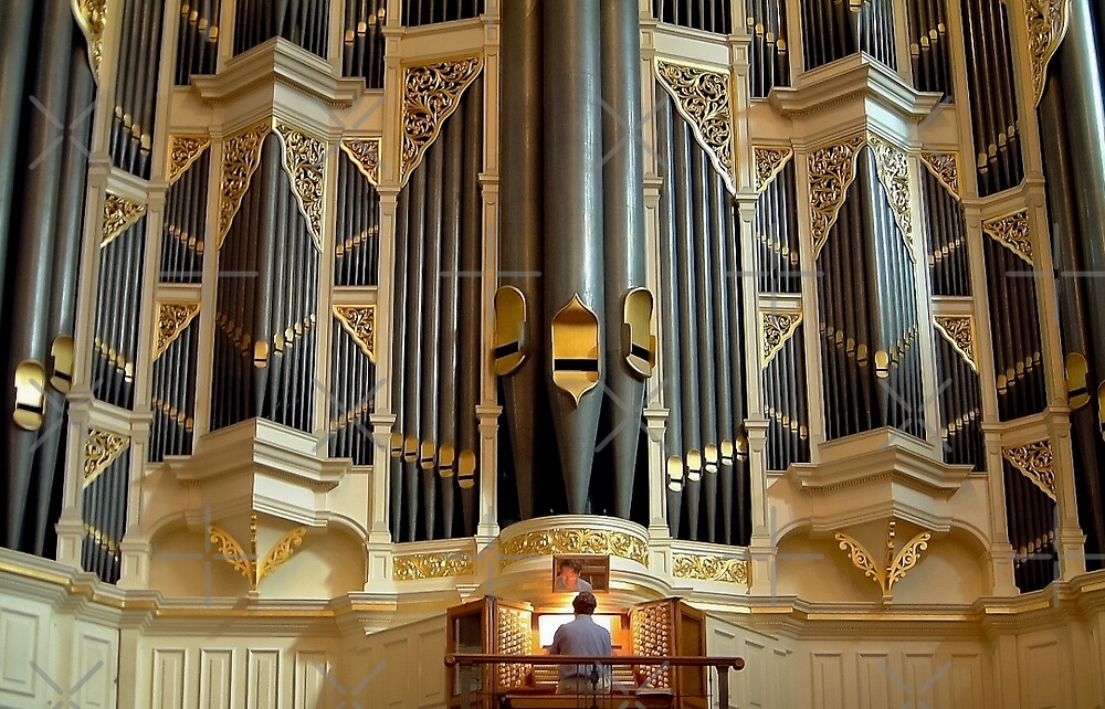 Quot Sydney Town Hall Pipe Organ Quot By Jenny Setchell Redbubble