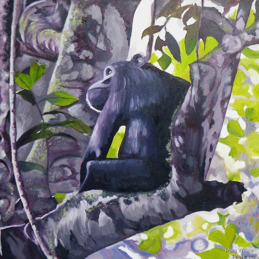 Chimpanzee by Pam Wilkie