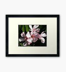 Pale is Beautiful Framed Print