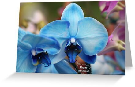 Happy Birthday Greeting Card 7053 by Thomas Murphy