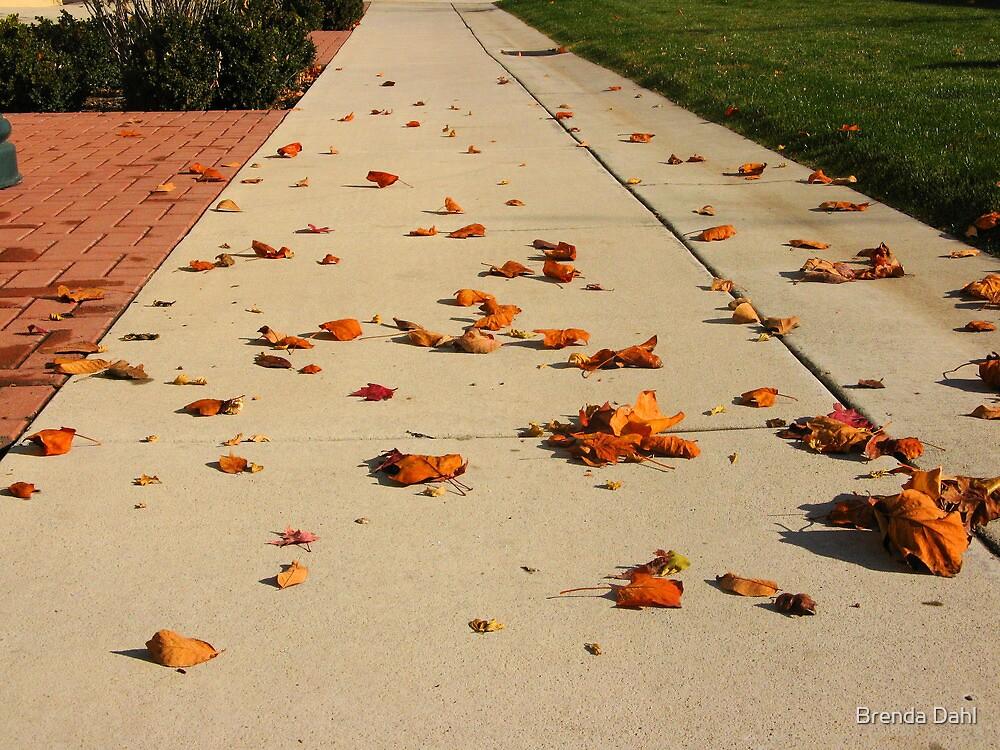 Orange Leaf Road by Brenda Dahl