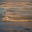 Colorful Frozen Lake At Sunset by Bo Insogna