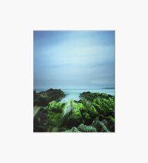 """Beachular Mosstrophy"" ∞ Barragga Bay, NSW - Australia Art Board"