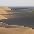 Sunset Over Dunes by jonvin