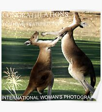 My Banner for International Woman's Photography Challenge Poster