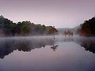 Dawn by Carolyn  Fletcher