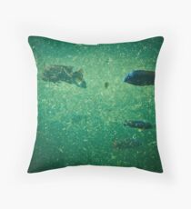 Cichlid Dreams Throw Pillow