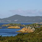 Rocky Cape National Park by Judi Rustage