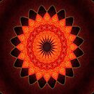 Kaleidoscope of Red by W E NIXON  PHOTOGRAPHY