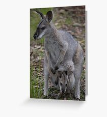 Female Kangaroo with Joey in pouch Greeting Card