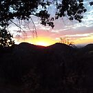 Sunset In The San Bernardino Mountains-3 by Bearie23