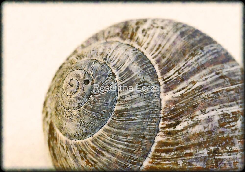 SnailHouse by RosiLorz