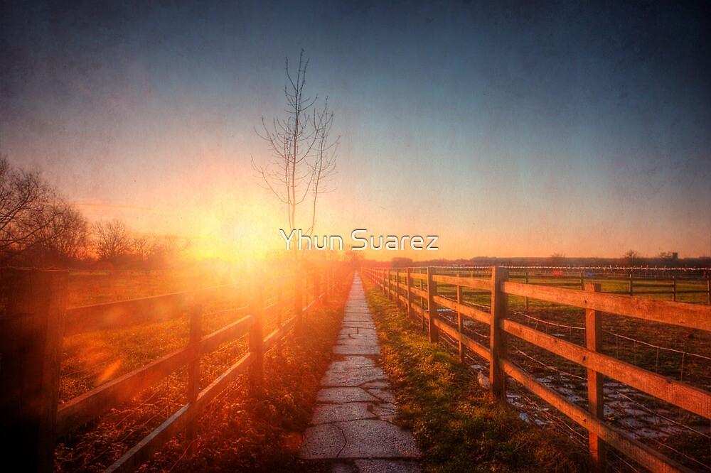 New Beginning by Yhun Suarez
