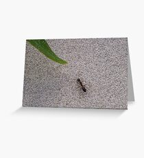 Inch Ant Greeting Card