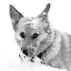 """So This Is What Winter Tastes Like "" by Renee Blake"