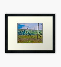 Crazing cows Framed Print