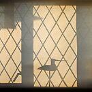 Early morning window by richard  webb
