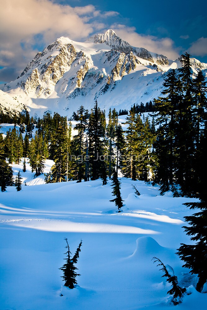 North Cascades Winter by Inge Johnsson
