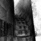 Pisa Stairway by Ashli Amabile