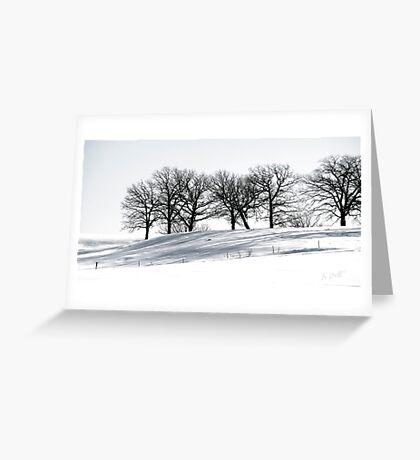Stark Winter's Day Greeting Card