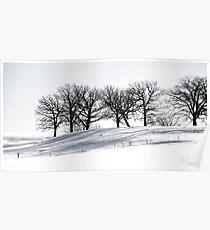 Stark Winter's Day Poster