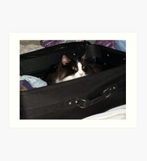 If I hide in here, maybe I can sneak on the vacation with you.... Art Print