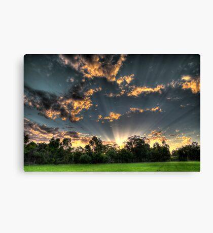setting suns rays through the trees #1 Canvas Print